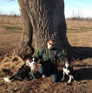 Dr. Cindi Delany with border collies